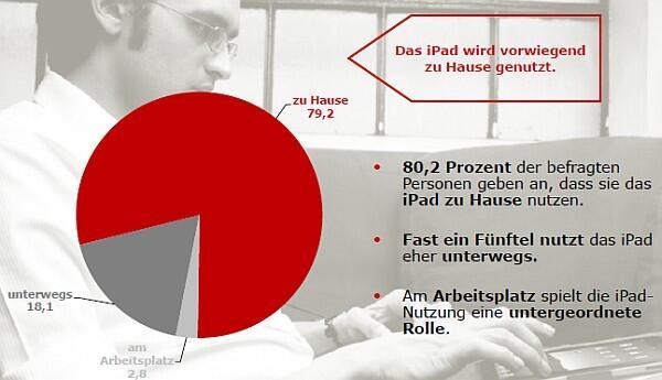 iPad stats Umfrage