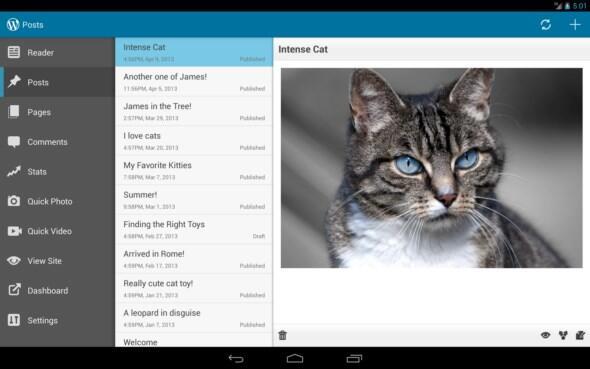 Android blog wordpress