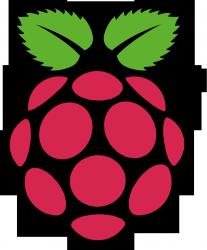 Raspberry Raspberry Pi