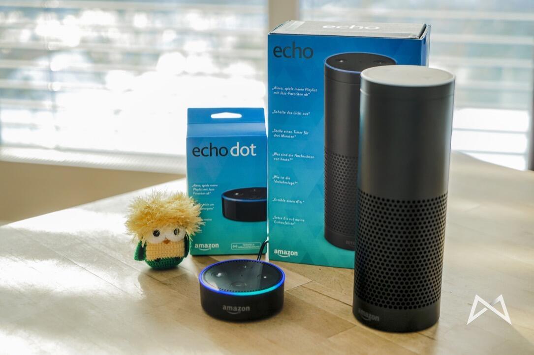 alexa Echo müll Skill smart home
