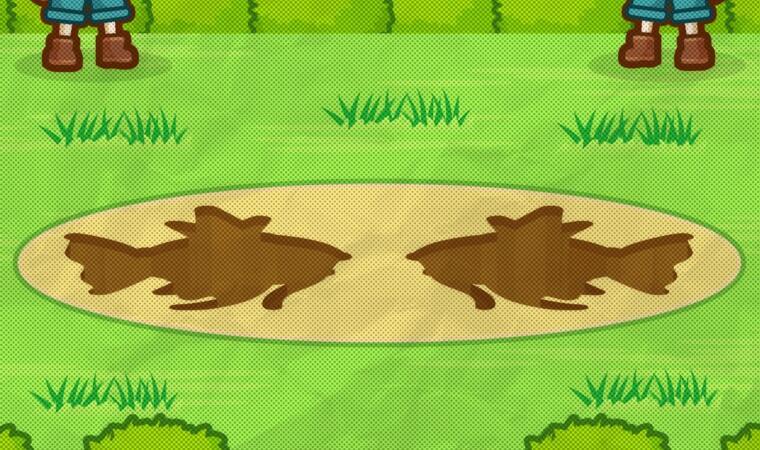 Android iOS karpador Nintendo pokemon Spiel