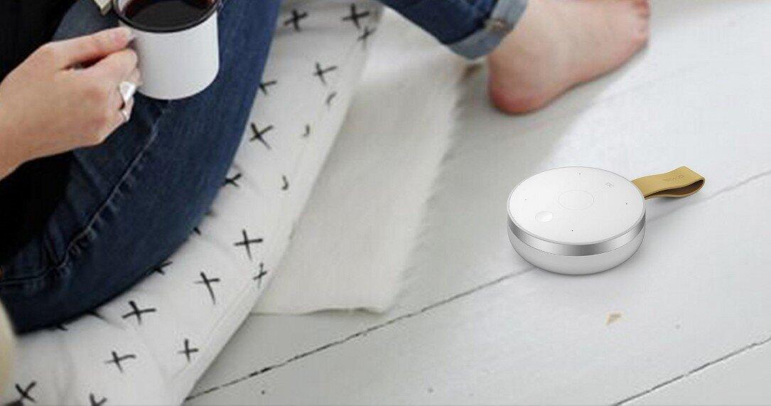 Google Google Assistant Google Home mobvoi Mobvoi Tichome Mini